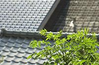 金属屋根の修理/メンテナンス