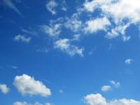 6、空気の浄化効果