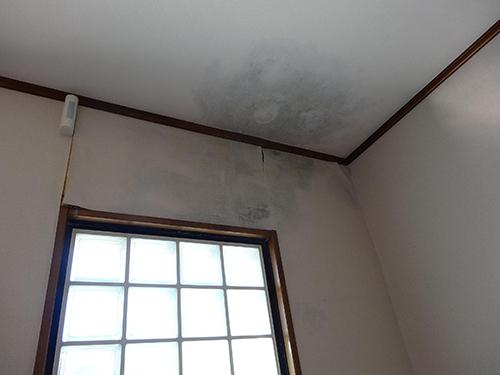 屋根の雨漏りを放置すると大変!!人体にも影響!!