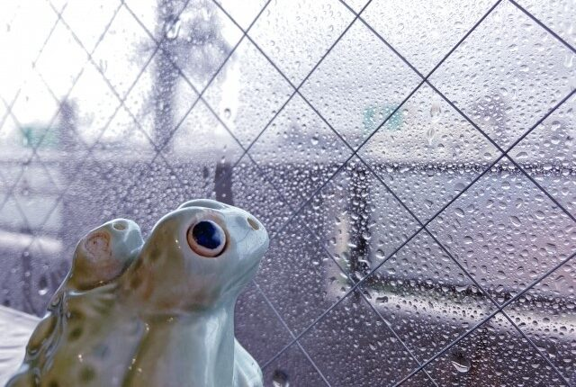 【初心者必見】雨漏り修理の費用を抑えるコツは?知っておくべき相場や注意点を簡単解説!